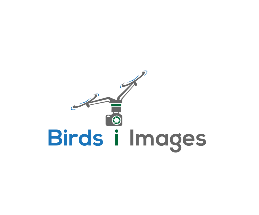 The Birds i Images Logo showing a camera being held by properllors, cable and pole
