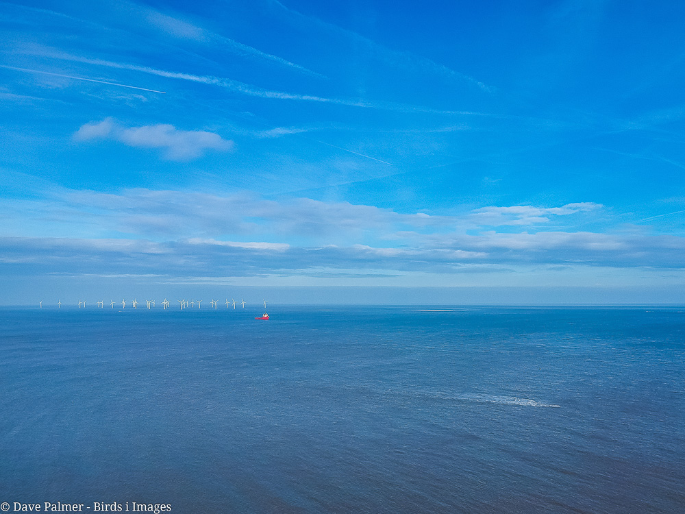 The wind turbines in the sea at Great Yarmouth in Norfolk